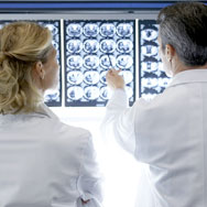 Photo of pathologists at work